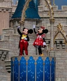 Mickey & Minnie Castle