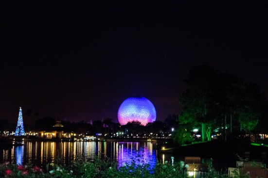 Spaceship Earth & Tree